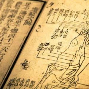 Ecole de Medecine Traditionnelle Chinoise