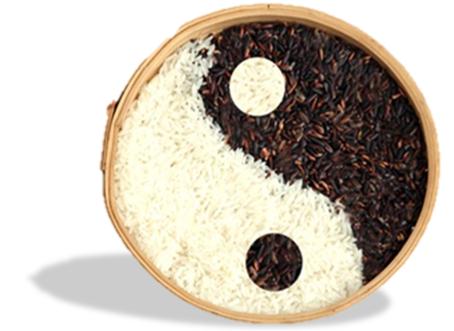 Dietetique du Yin Yang